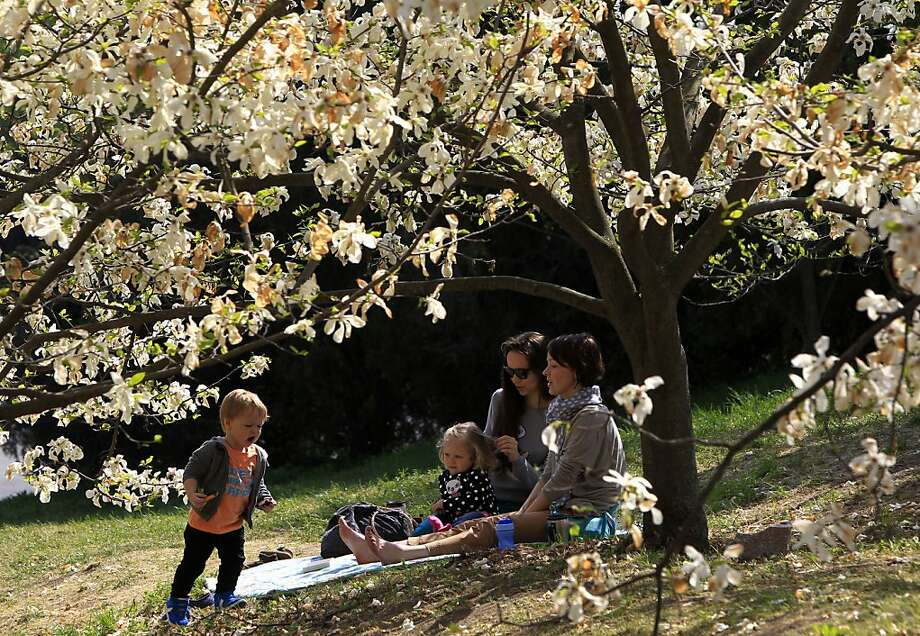 People relax near a blossoming magnolia tree in Kiev, Ukraine, Monday, April 29, 2013. (AP Photo/Sergei Chuzavkov) Photo: Sergei Chuzavkov, Associated Press