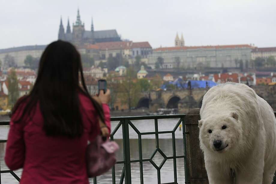 With a backdrop of Prague Castle, a woman takes a photo of two Greenpeace activists wearing a polar bear costume roaming around the Czech capital to warn about the dangers of global warming in the Arctic, Monday, April 29, 2013. (AP Photo/Petr David Josek) Photo: Petr David Josek, Associated Press