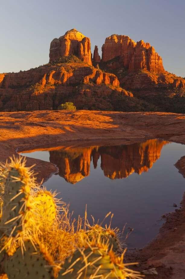 15. Arizona - 39.3 percent