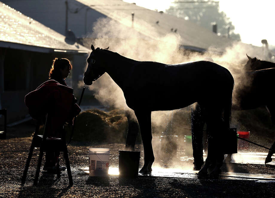Steam rises from a horse as it is washed in the barn area during morning training in preparation for the 2013 Kentucky Derby at Churchill Downs on April 30, 2013 in Louisville, Kentucky. Photo: Andy Lyons, Getty Images / 2013 Getty Images
