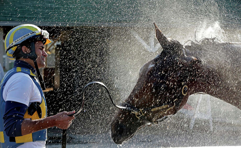 Trainer Rudy Rodriguez watches Kentucky Derby hopeful Vyjack get a bath after a workout at Churchill Downs Tuesday, April 30, 2013, in Louisville, Ky. Photo: Charlie Riedel, AP / AP