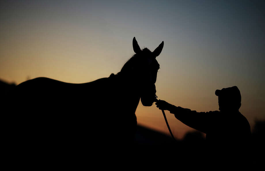 A worker holds a horse called Fan Fair after it's morning workout at Churchill Downs Tuesday, April 30, 2013, in Louisville, Ky. Photo: David Goldman, AP / AP