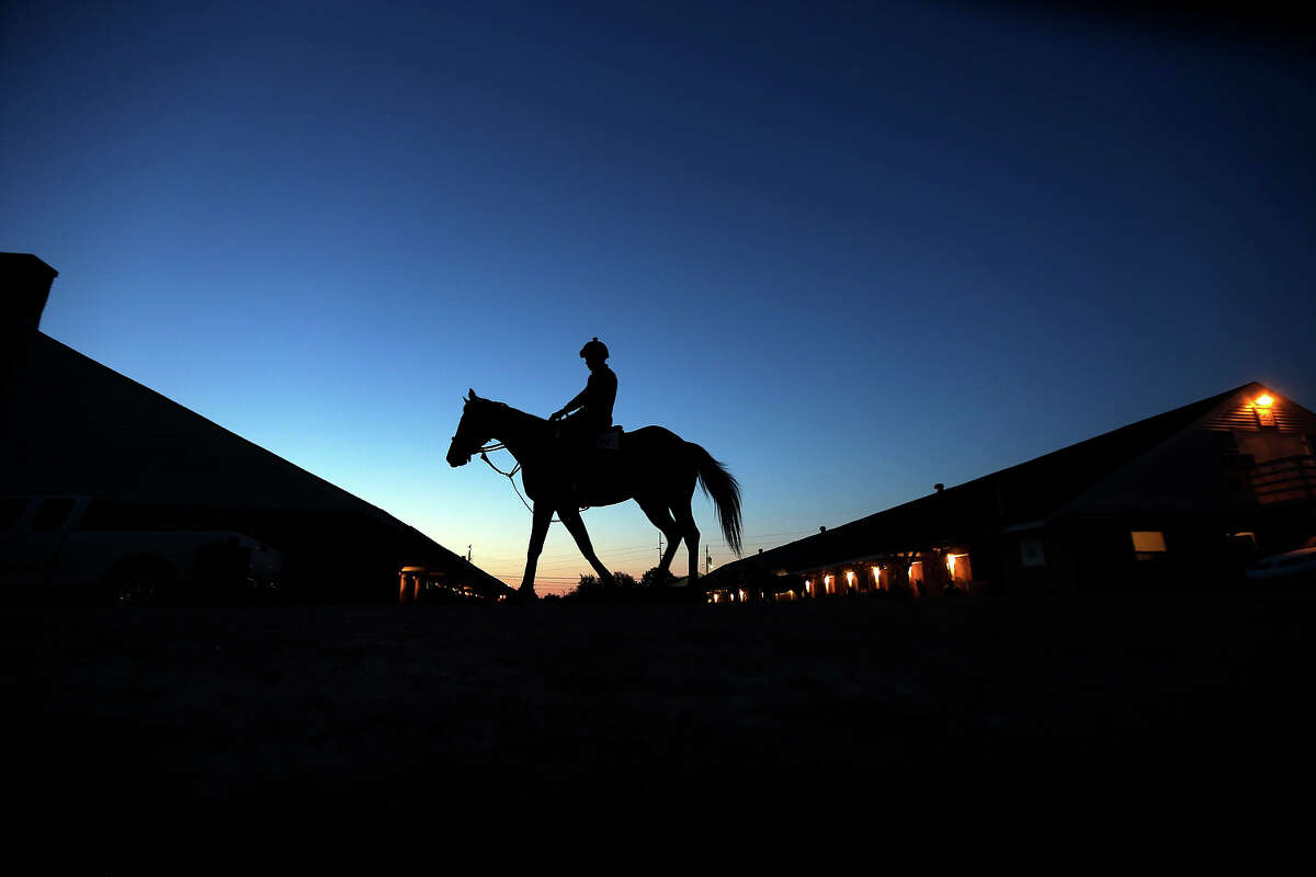 A horse makes it's way to the track for a morning workout at Churchill Downs Tuesday, April 30, 2013, in Louisville, Ky.