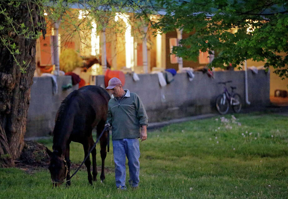 A hot walker takes a horse out grazing at Churchill Downs Monday, April 29, 2013, in Louisville, Ky. Photo: Morry Gash, AP / AP