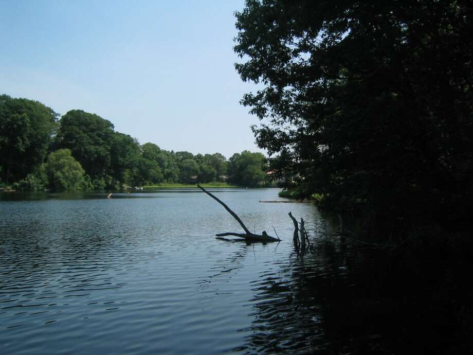 The head of Lees Pond, as the Saugatuck slows.
