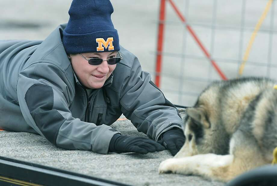 Bo knows better: Toni Yoakam tries to coax her Siberian husky, Bo, to pull a 370-pound sled in the Double Dog Dare weight-pulling competition in Luna Pier, Mich., but Bo's not budging. Photo: Tom Hawley, Associated Press