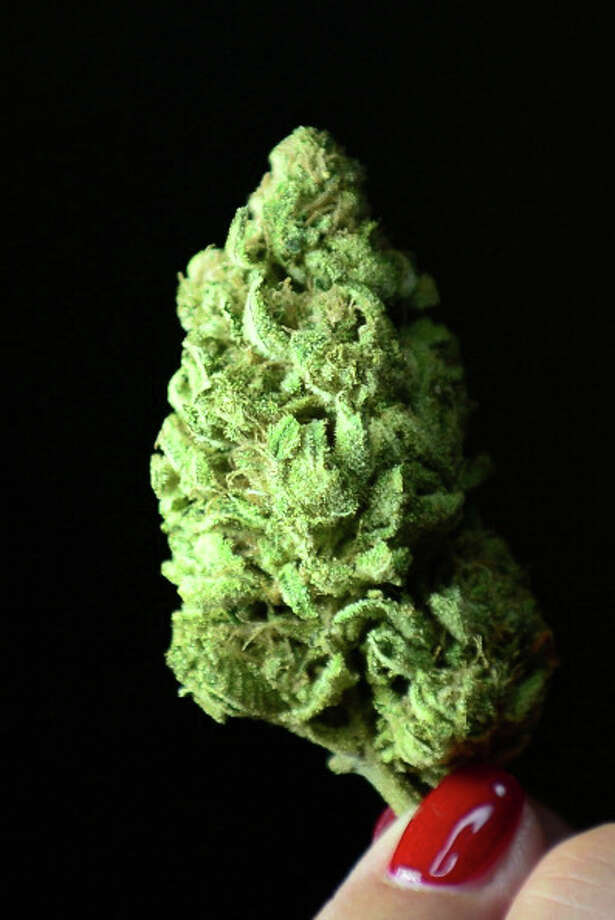 The Green  A bud of Maui Afghooey medical marijuana. Photo: FREDERIC J. BROWN, AFP/Getty Images / 2012 AFP
