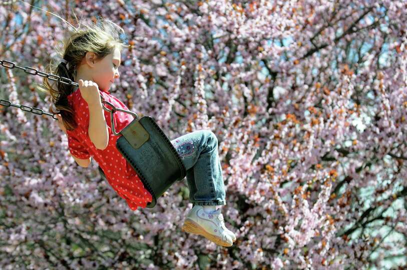 Natalie Ulmer, 5, of Schenectady swings near a flowering crabapple tree on Tuesday, April 30, 2013,
