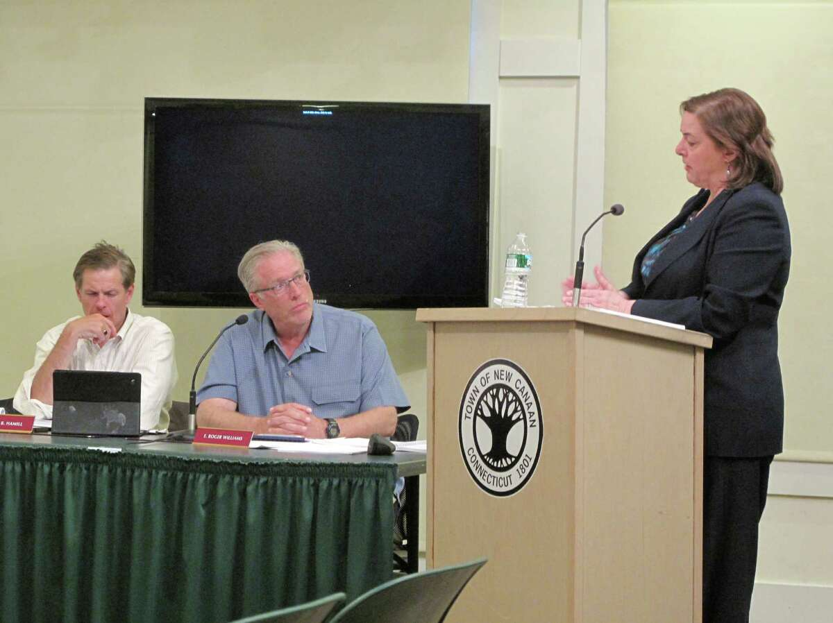 Town Council members Robert Hamill (left) and Roger Williams (center) listen as accountant Marcia Marien (right) of the firm O'Connor Davies, LLP, gives a presentation of the town's 2011-2012 audit to the Town Council Tuesday, April 30, 2013 at the New Canaan Nature Center.
