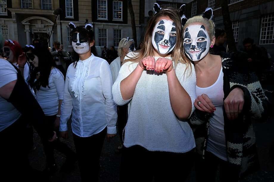 Witnessing the badgers: In London, face-painting animal-rights advocates protest a government proposal to cull up to 5,000 badgers. Britain intends to kill the animals in an effort to stem tuberculosis in cattle. Animal welfare groups are outraged by the plan. Photo: Ben Stansall, AFP/Getty Images