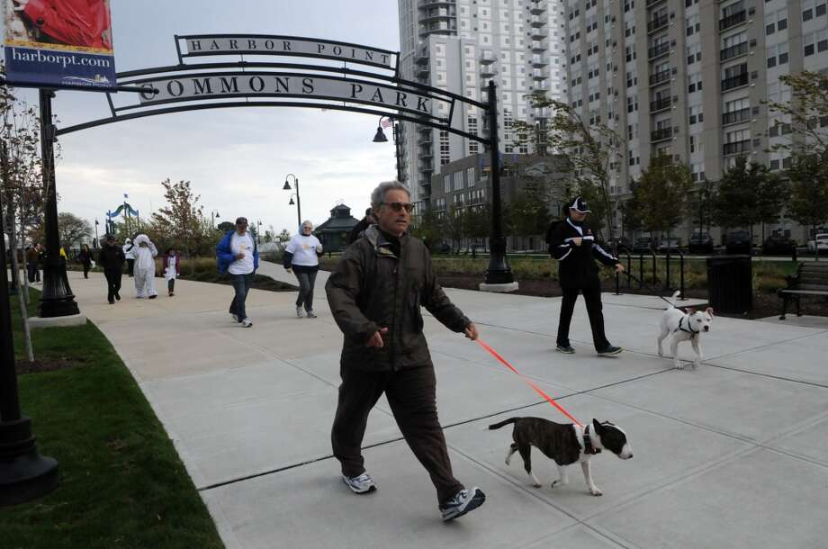 No. 11: Between the years of 1960 and 2010, the city of Stamford grew by 32 percent, from 92,713 people to 122,643.  Steve Zeide, a vet at the Bulls Head Pet Hospital head out for Stamford Animal Rescue's Around the Point for STAR, a 4K walk or run around Harbor Point for dogs and their owners, in Stamford, Conn., Oct. 14, 2012.  STAR was formed in Feb. 2012 with the mission of keeping dogs out of shelters through supporting struggling dog owners with a pet food pantry, financial aid and an emergency shelter for pets.
