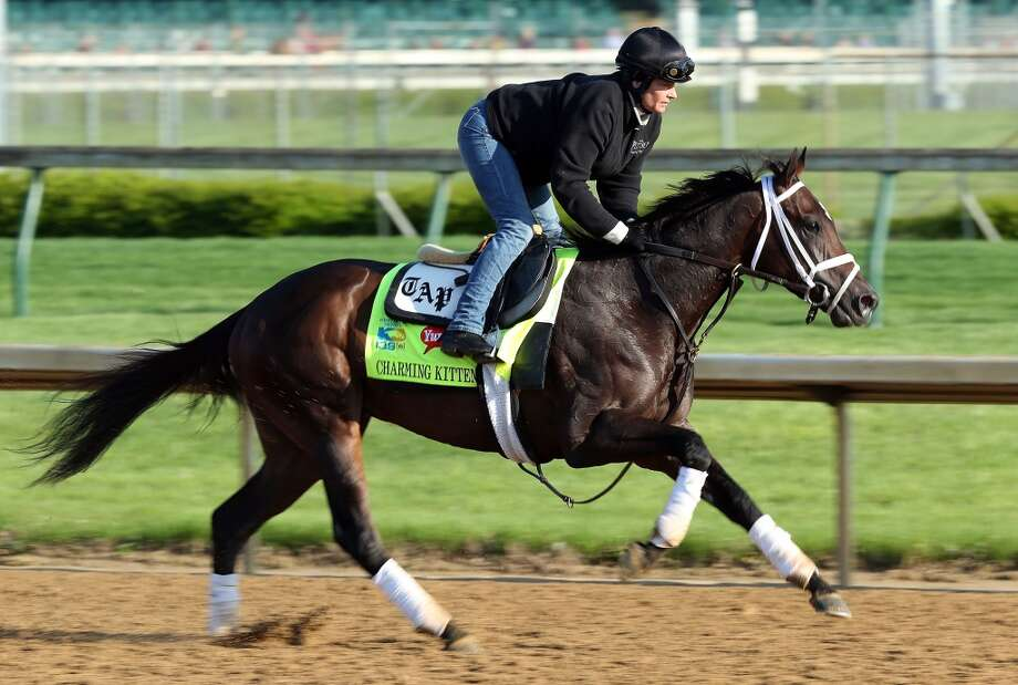 15. Charming Kitten (Edgar Prado) — Todd Pletcher