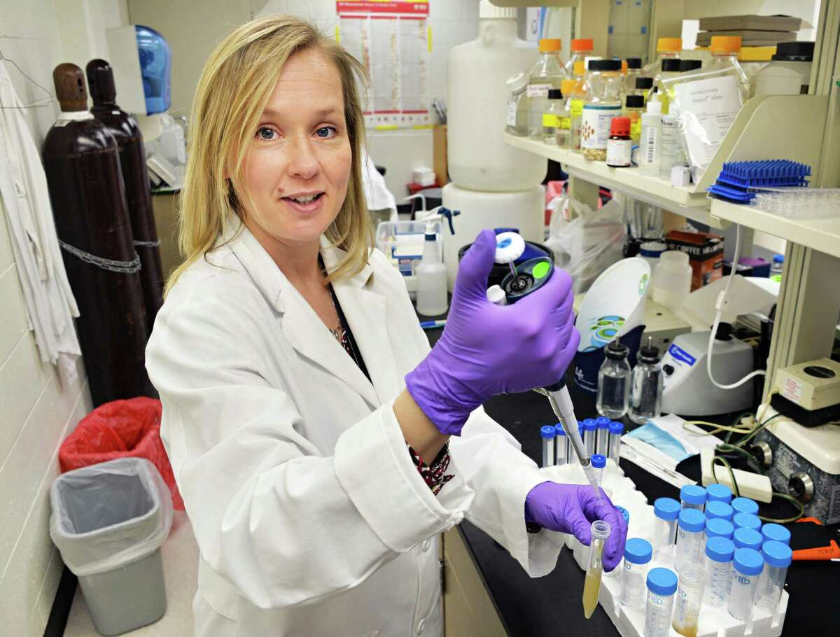 Dr. Kirsi Jarvinen-Seppo in her Albany Medical Center lab where she is doing research on food allergies in Albany, NY Wednesday May 1, 2013. .(John Carl D'Annibale / Times Union)