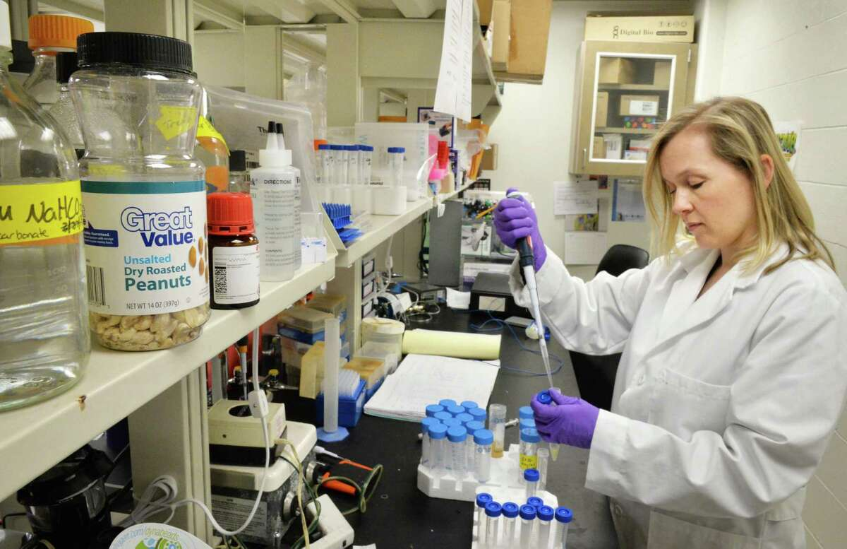 Dr. Kirsi Jarvinen-Seppo in her Albany Medical Center lab where she is doing research on peanut allergies in Albany, NY Wednesday May 1, 2013. .(John Carl D'Annibale / Times Union)