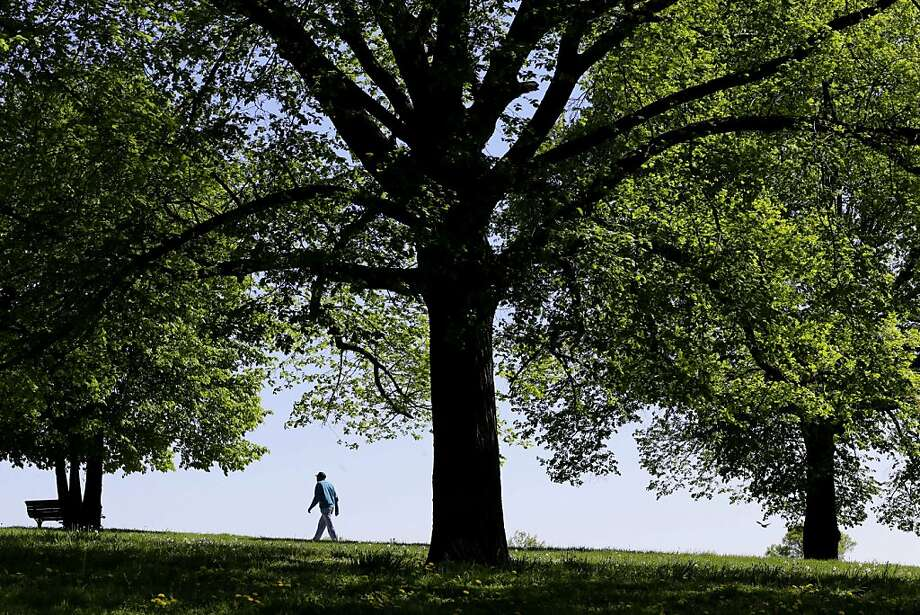 A man walks in a park on Wednesday, May 1, 2013, in Baltimore. Sunny weather greeted the Mid-Atlantic region on the first day of May. (AP Photo/Patrick Semansky) Photo: Patrick Semansky, Associated Press