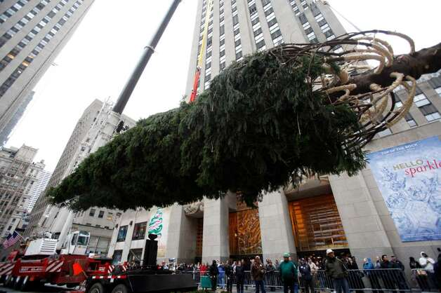 Workers and pedestrians watch as the  Rockefeller Center Christmas Tree is raised in the air in New York, Thursday, Nov. 12, 2009.   The over 10 tons, 76 foot tall tree from Easton CT was  lit for the holidays on Dec. 2, 2009.   (AP Photo/Seth Wenig) Photo: Seth Wenig, AP / AP