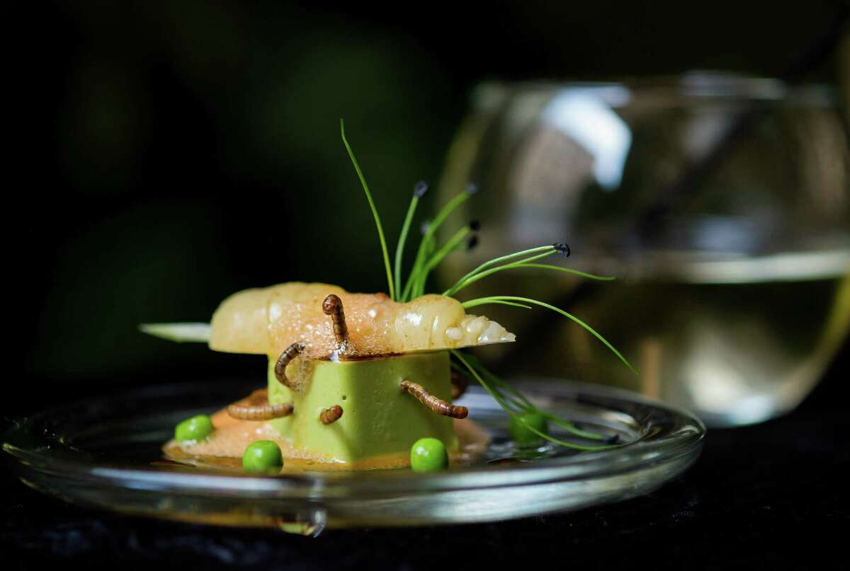 A starter dish of 'Petit pois carre et son ecume de Carottes, vers de farine' - peas, carrots and worms- is prepared by French chef David Faure in his restaurant 'Aphrodite' in Nice on May 2, 2013 in Nice, France. Crickets and worms as produce for culinary requirements cost up to 1250 euros per kilogramme on May 2, 2013 in Nice, France. Faure's restaurant, renowned for it's innovative and inventive cuisine, has been awarded one star in the Michelin Guide.