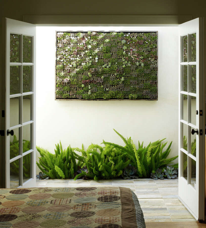 A living succulent picture hangs outside a bedroom in a San Francisco home. Photo: Marion Brenner, HONS / Flora Grubb Garden