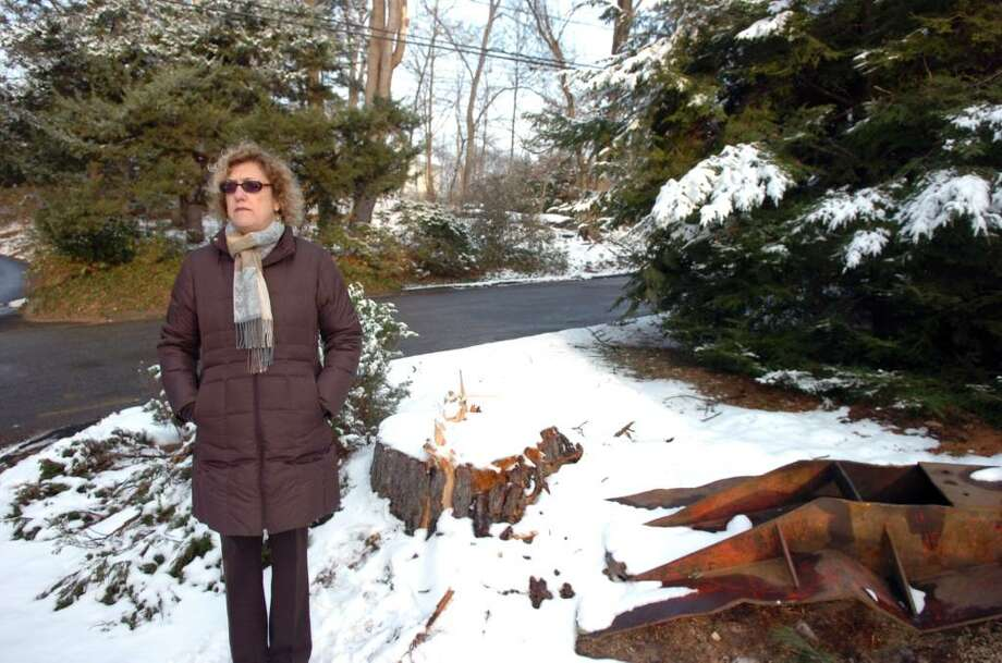 JoAnn Messina, executive director of the Greenwich Tree Conservancy, stands beside a stump along 19 Montgomery Lane near the Montgomery Pinetum Friday afternoon, January 8, 2009.  The property is in the midst of development which is posing a threat to the life of some of its long standing trees. Already the developer faces a fine of up to $10,000 for cutting this decades-old Norway Spruce tree which stood on town property. Photo: Keelin Daly / Greenwich Time