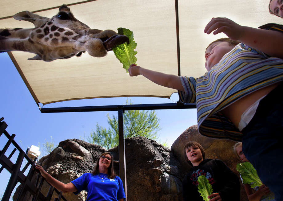 Houston is a great place for families to explore.