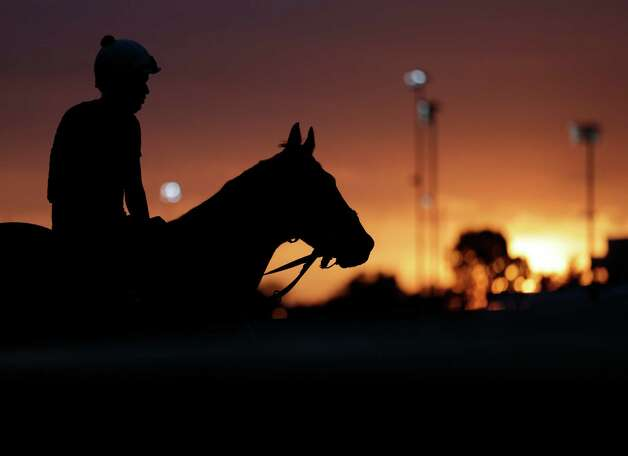 A horse waits to take his morning workout at Churchill Downs Friday, May 3, 2013, in Louisville, Ky. Saturday will be the 139th running of the Kentucky Derby. (AP Photo/Charlie Riedel) Photo: Charlie Riedel, Associated Press / AP