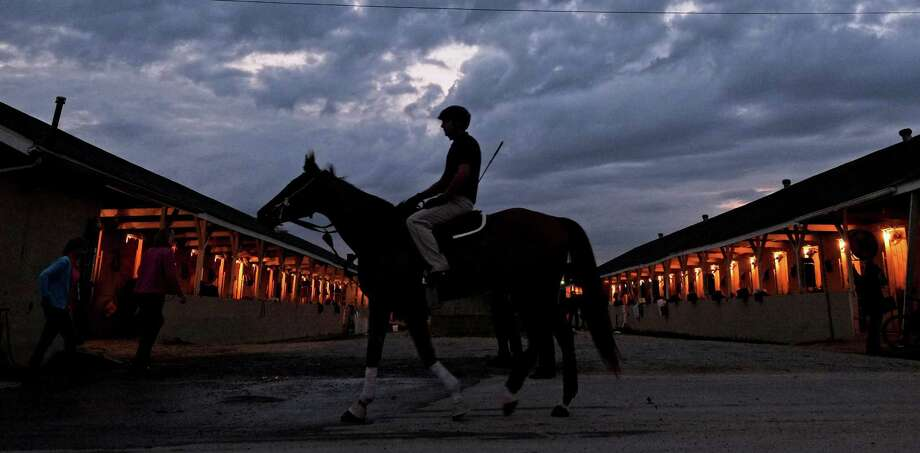 A horse makes it's way to the track for a morning workout at Churchill Downs Friday, May 3, 2013, in Louisville, Ky. Saturday will be the 139th running of the Kentucky Derby. (AP Photo/J. David Ake) Photo: J. David Ake