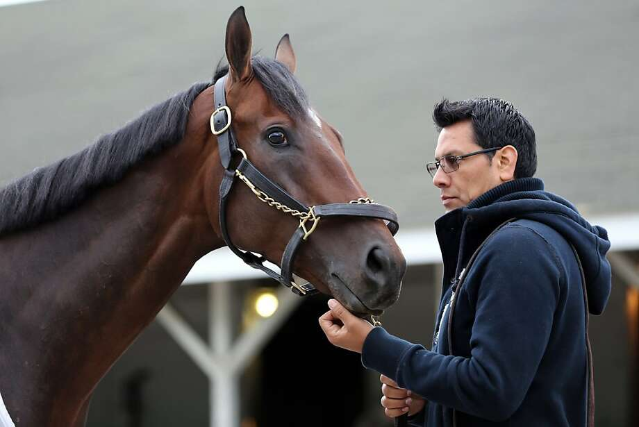 Overanalyze is seen with his groom on the backside on the morning of the Kentucky Derby at Churchill Downs Saturday, May 4, 2013, in Louisville, Ky.  Today is the 139th running of the Kentucky Derby. (AP Photo/Gregory Payan) Photo: Gregory Payan, Associated Press