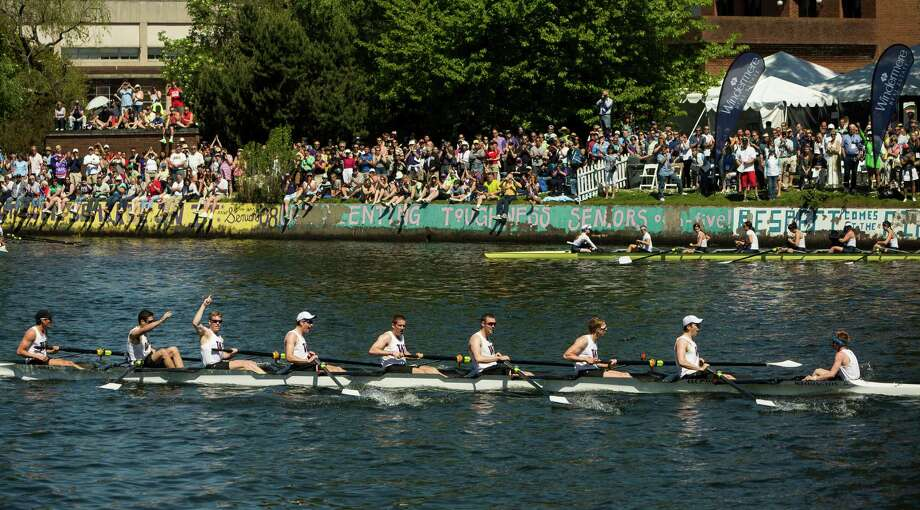 Men of the University of Washington celebrate their first place win at the Windermere Cup Saturday, May 4, 2013, in Seattle. Photo: JORDAN STEAD, SEATTLEPI.COM / SEATTLEPI.COM
