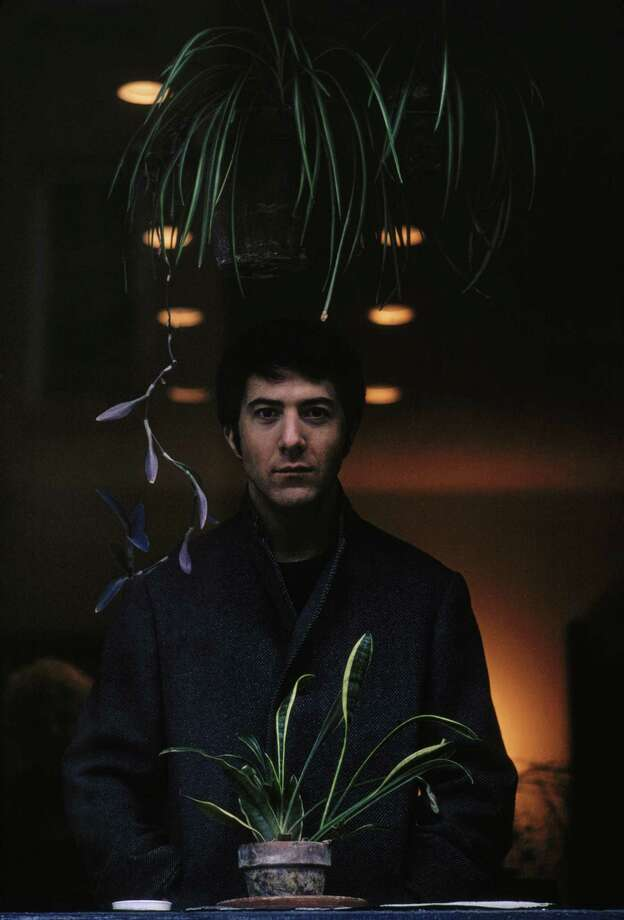 American actor Dustin Hoffman with two potted plants. Photo: Terry O'Neill, Getty / 2005 Getty Images