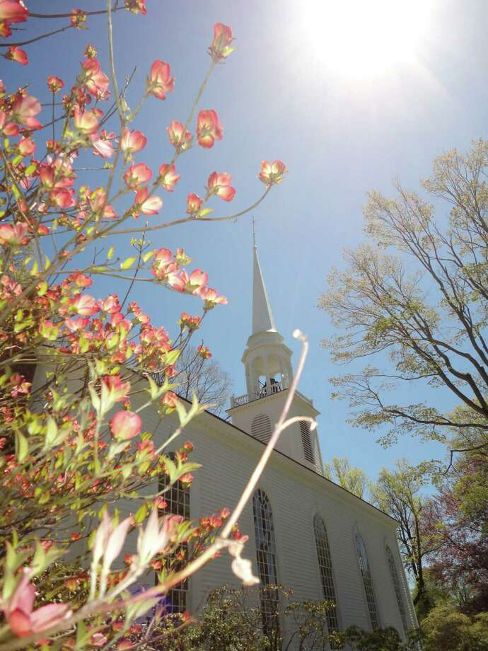 Fridayis Arbor Day, so go outside and appreciate the trees around you.  Photo: Meg Barone / Fairfield Citizen contributed