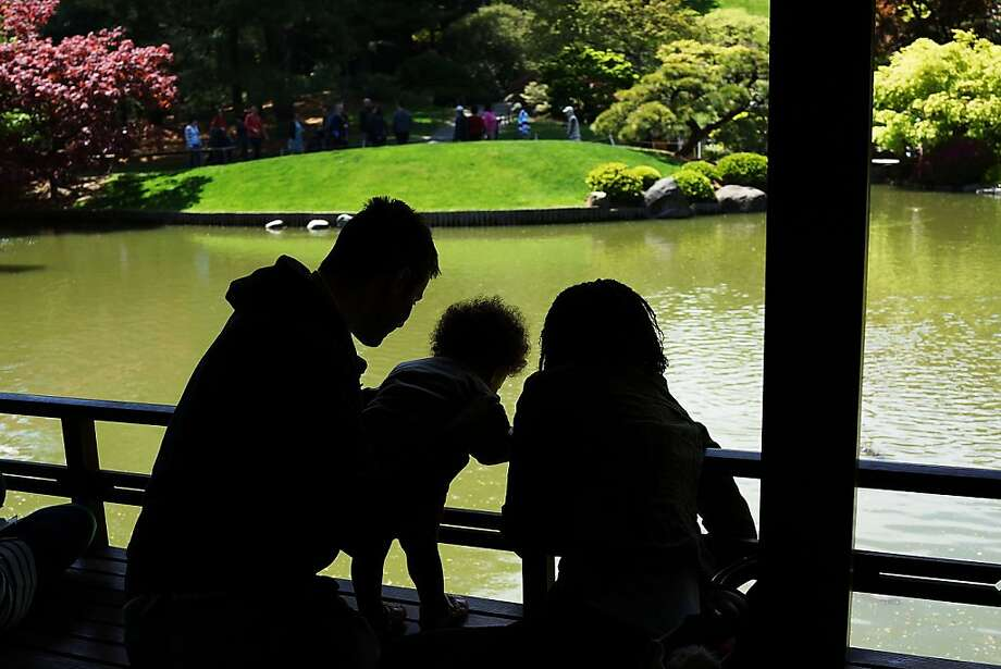 NEW YORK, NY - MAY 05: A family looks at fish in a pond at the Brooklyn Botanical Garden on May 5, 2013 in New York City. The botanical garden, which sits on 52-acres, features numerous gardens and a conservatory. The Brooklyn Botanical Garden is famous for their cherry blossoms, which typically bloom at the end of April and are a centerpiece of the Garden's annual cherry blossom festival which attracts thousands of visitors.  (Photo by Spencer Platt/Getty Images) Photo: Spencer Platt, Getty Images