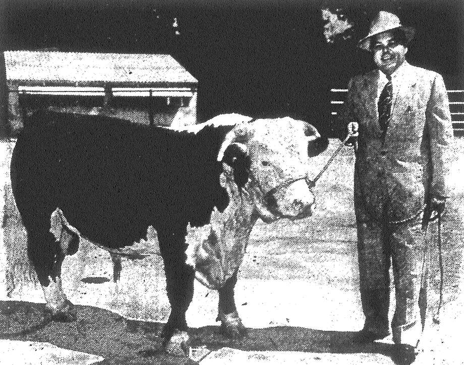 Some lucky person will receive this $500 registered bull from Straus Medina Hereford Ranch, shown by Charles Roark, supervisor of meats for Handy Andy Supermarkets. The drawing will be held at the new Handy Andy Store No. 21 at Pleasanton Road and S.W. Military Drive. Published in the San Antonio Light May 31, 1953. Photo: File Photo