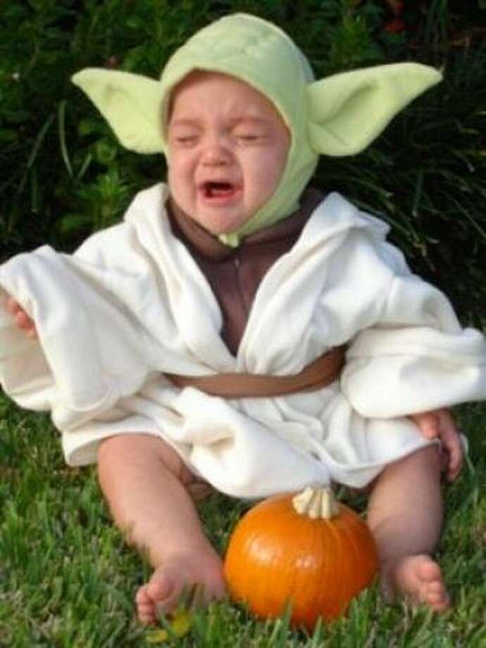 """Yoda not happy"" by woodlands3808 Photo: HC"