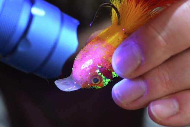 Fly tyer Pat Cohen's uses a UV light to cure resin applied to the belly an eyes of his stacked deer hair fly, theCrank, at Cohen's Cobleskill studio Wednesday April 3, 2013.   (John Carl D'Annibale / Times Union) Photo: John Carl D'Annibale / 10021804A