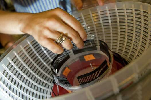 """Sally Centrifuge"" is made out of a