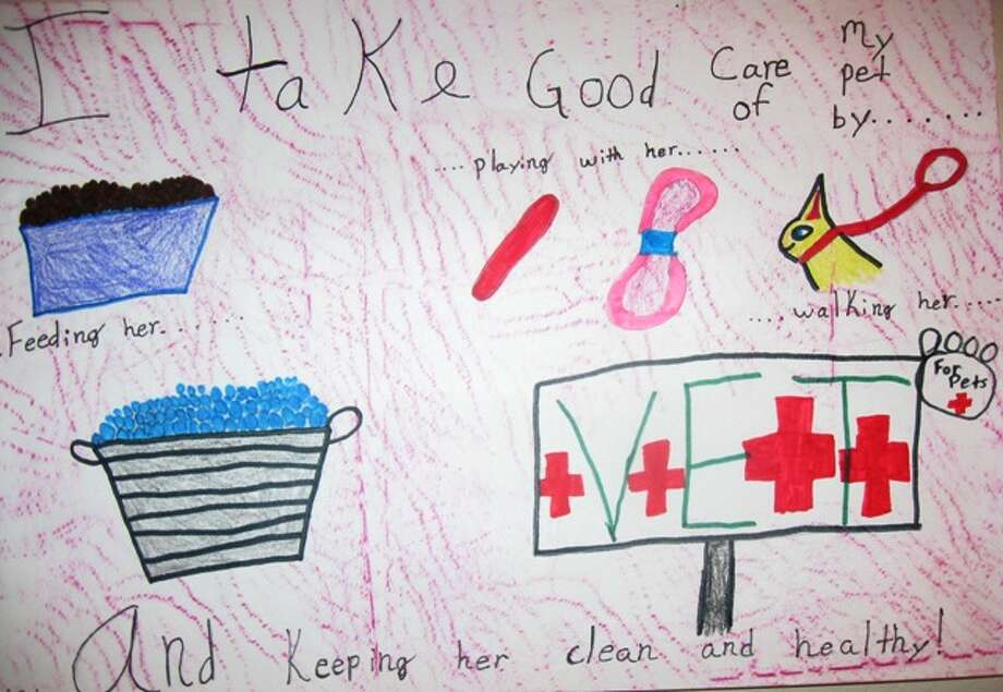 """I will take care of my pet by...""  Third Grade, 3rd Place, Megan G., Charles Beard Elementary School"