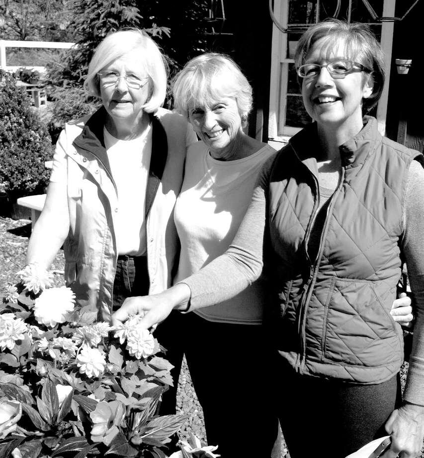 The Garden Club of Old Greenwich Plant Sale will take place tomorrow, May 11, from 8 a.m. to 2 p.m. at the Eastern Greenwich Civic Center, Harding Road, Old Greenwich. Busy preparing for the event are, from left, Plant Sale Co-Chairmen Cindy Kuehnel and Linda Perry Lewis, whoare selecting annuals for the sale along with Terry Condon, Eden Farms owner. Photo: Contributed Photo / Greenwich Citizen