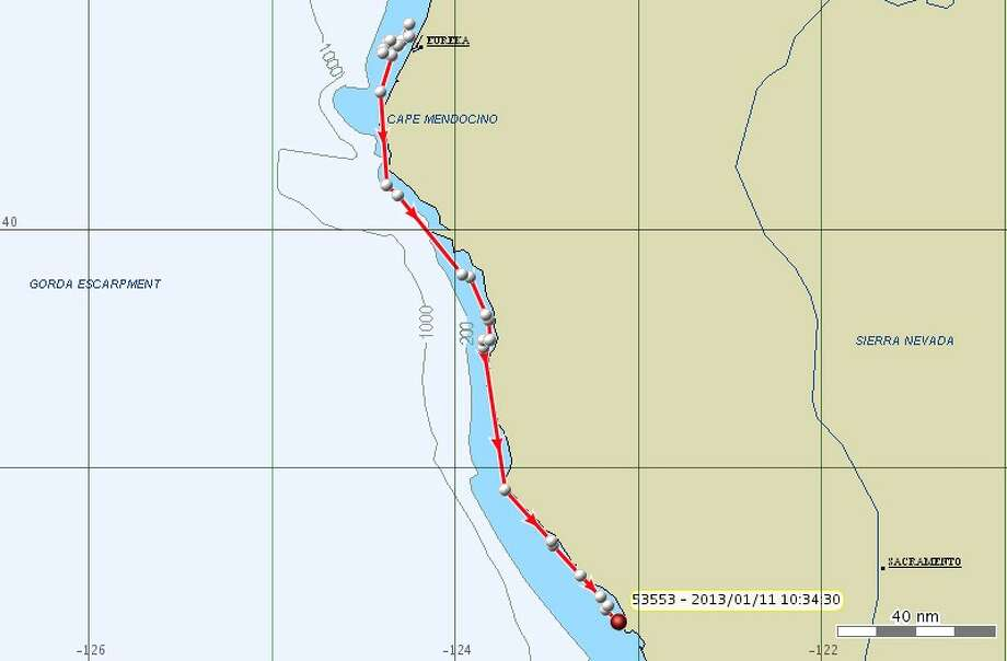 Jan. 11: In the prior two days, K pod continued traveling south, close to the coast, from off Eureka/Arcata to near Bodega Bay in the morning.