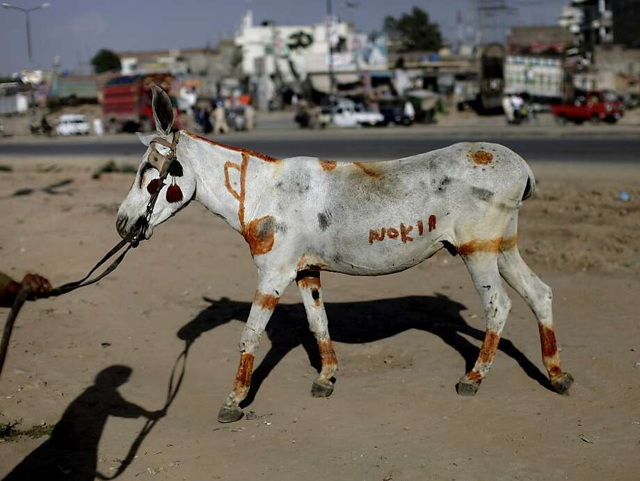 Pakistani, Khairullah Juma, 13, his shadow cast on the ground, walks his painted donkey to a whole sale fruit and vegetable market hoping to rent it, on the outskirts of Islamabad, Pakistan, Thursday, May 9, 2013. Khairullah, painted his donkey to make it beautiful and attract customers.  Photo: Muhammed Muheisen, Associated Press
