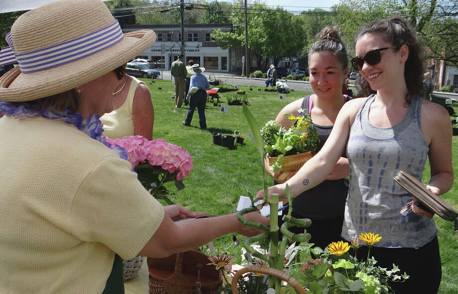 The Westport Garden Club's annual plant sale is planned Friday from 9 a.m. to 1 p.m. on Jesup Green. Find out more.  Photo: Mike Lauterborn / Westport News contributed