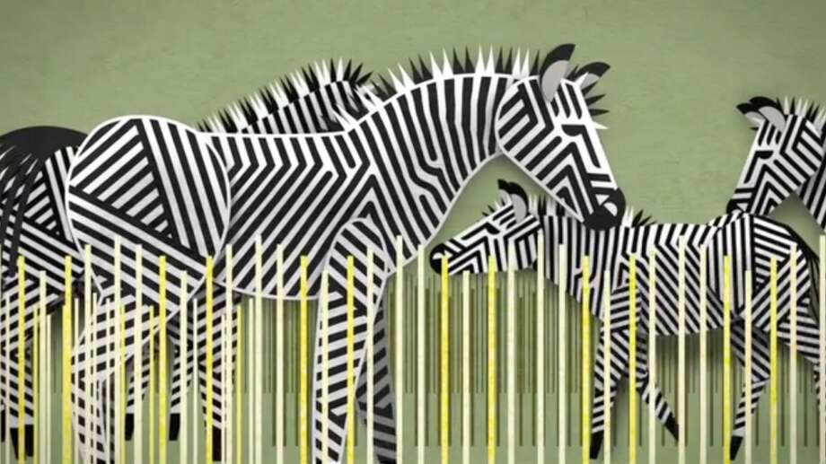 A depiction of zebras from the new ad campaign WDCW created for Woodland Park Zoo.