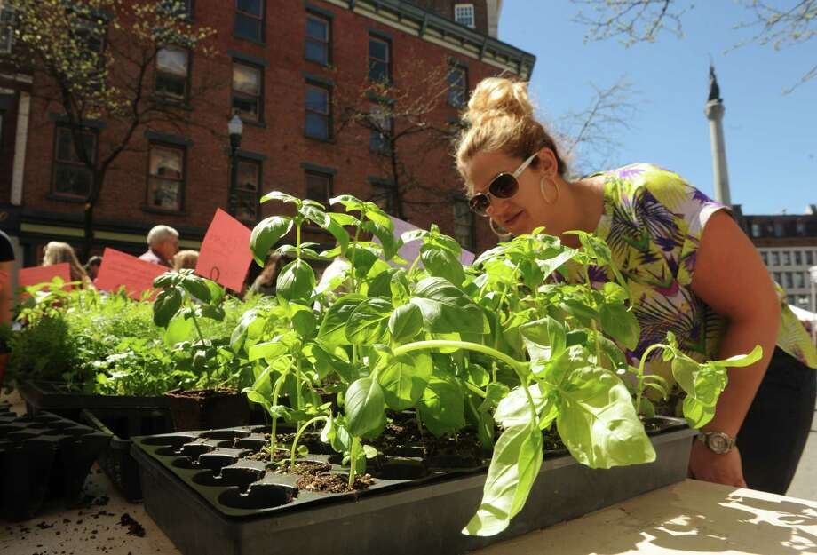March: Prepare for summer: Decide if you want to participate in a CSA. Photo: Michael P. Farrell