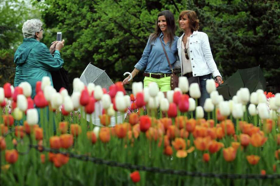 Phyllis Kearbey of East Greenbush, left, takes a picture of her granddaughter Paige Kearbey, center, and daughter Patty Kearbey during the Tulip Festival on Saturday, May 11, 2013, at Washington Park in Albany, N.Y. (Cindy Schultz / Times Union) Photo: Cindy Schultz / 00022344A