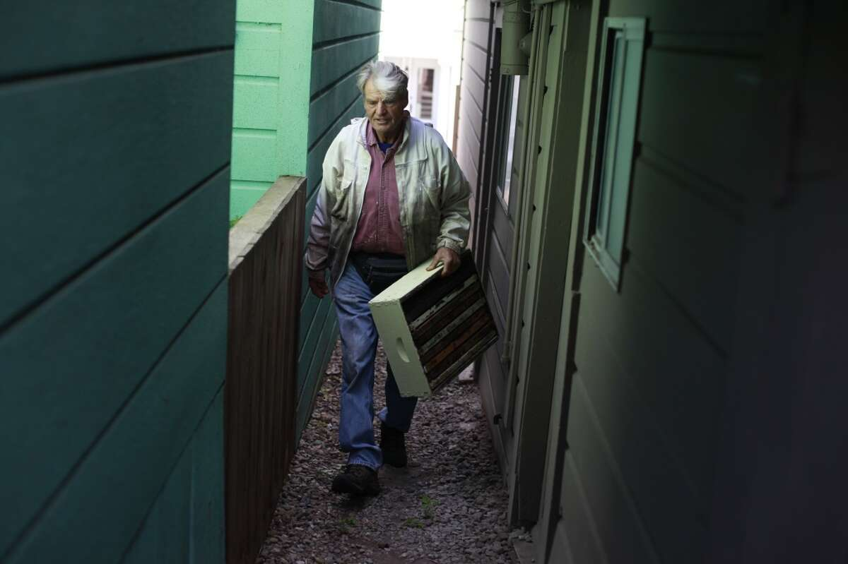 Spencer Marshall checks on a pair of bee hives in the back yard of a San Francisco home.