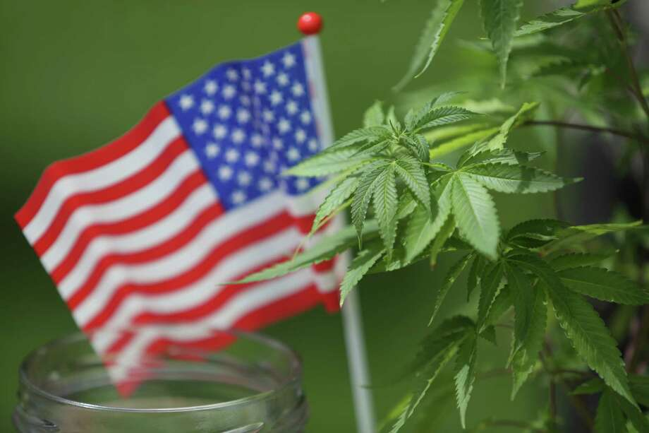 A flag is shown with a marijuana plant during the Cannabis Freedom March. Photo: JOSHUA TRUJILLO, SEATTLEPI.COM / SEATTLEPI.COM