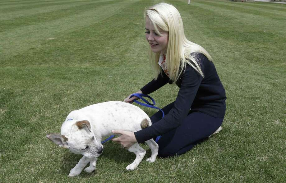 Elizabeth Smart plays with her dog following an interview Tuesday. Photo: AP
