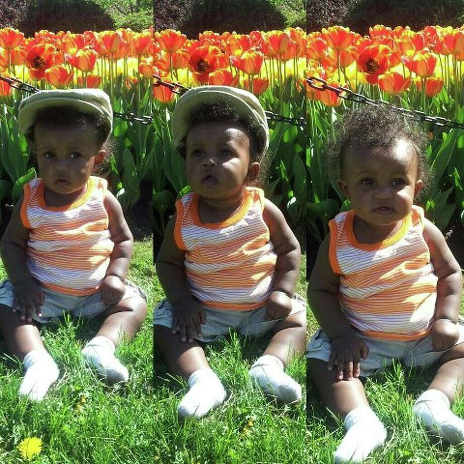 Here's a view, in three, of 9-month-old Lucian Lee enjoying the tulips at Albany's Washington Park before last weekend's festival. His proud parents are Antonio Lee and Tiana Taylor.(Tiana Taylor)