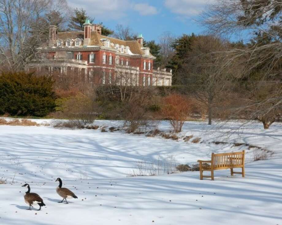 The Phipp's estate: a 1906 23-room mansion designed by George A. Crawley and used in Hollywood films such as Hitchcock's North by Northwest.  Seen here under snowfall, Westbury House today sits at the center of the Westbury Gardens, a 160-acre preserve created after John Phipps's death in 1958.