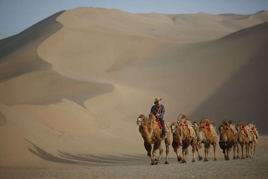 A caravan without riders: A guide leads camels near the Yueyaquan Crescent Lake in Dunhuang, China's northwestern Gansu province. Formerly a silk route hub and center for trade between China and the West, Dunhuang relies heavily on tourism and features a number of historic sites dating back to the Han Dynasty. Photo: Ed Jones, AFP/Getty Images