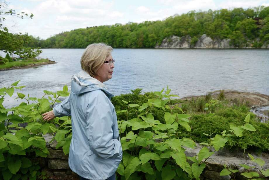 Kitty Fischer, of Ridgefield, points out the drainage problems near her house at Lake Mamanasco in Ridgefield, Conn. on Monday, May 13, 2013.  Mamansco, Ridgefield's largest lake, has problems with the drainage that include clogged streams and dirt build-up by the pipes leading to and from the lake. Photo: Tyler Sizemore / The News-Times